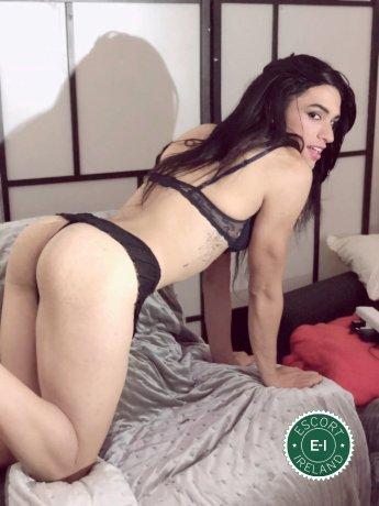 Mel  TV is a hot and horny Brazilian Escort from Dublin 1