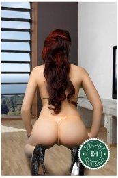 Virginya is a hot and horny Bulgarian Escort from Limerick City
