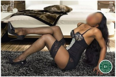Book a meeting with Sexy Naomi in Dundalk today
