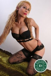 Meet the beautiful TS Carla Gold in Omagh  with just one phone call