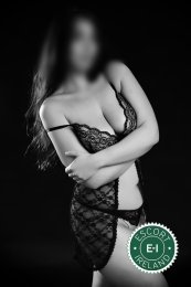 The massage providers in Dublin 18 are superb, and Amanda Massage is near the top of that list. Be a devil and meet them today.