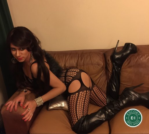TV Luna is a sexy Argentine escort in Limerick City, Limerick