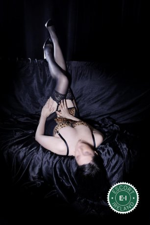 Carolyne  is a hot and horny Dutch escort from Limerick City, Limerick