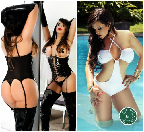 Book a meeting with TS Iris Gomez  in Dublin 6 today
