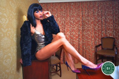 Meet TV Kimber Ladyboy in Limerick City right now!