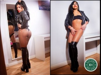 Meet the beautiful TV Kelly in Cork City  with just one phone call