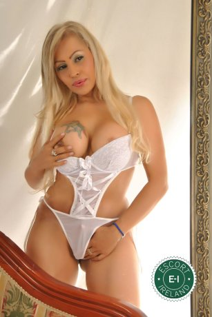 Yicell is a hot and horny Argentine escort from Waterford City, Waterford
