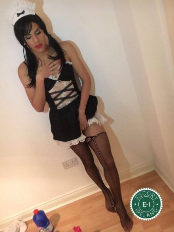 TV Tinker Bell  is a very popular Brazilian escort in Limerick City, Limerick