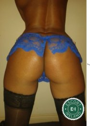 The massage providers in Dublin 4 are superb, and New Sensual Massage is near the top of that list. Be a devil and meet them today.