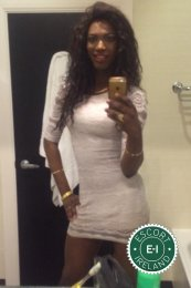 Meet the beautiful Black Panther Michelley TV in Dublin 1  with just one phone call