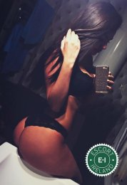 Meet the beautiful Denisse  in Dublin 6  with just one phone call