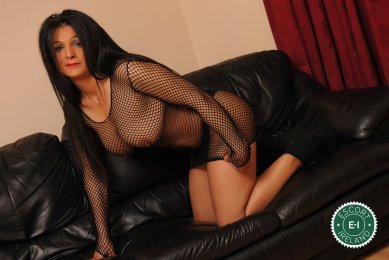 Meet the beautiful Sweet Bella in Sligo Town  with just one phone call