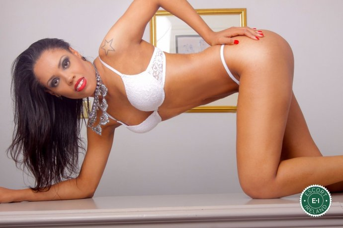 Sheilla is a hot and horny Brazilian escort from Dublin 8, Dublin