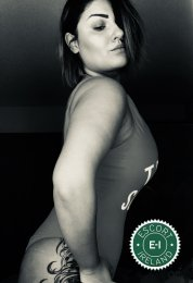 Book a meeting with Curvy Nina in Dublin 2 today