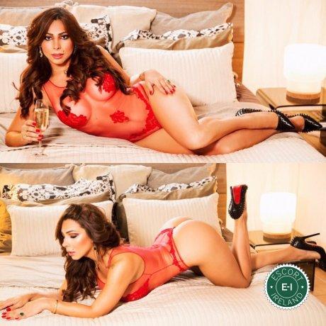 TS Pamela Nayara is a sexy Venezuelan escort in Dublin 24, Dublin
