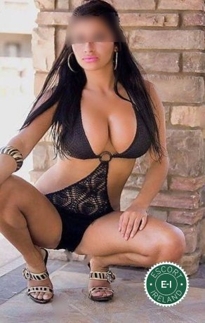 Book a meeting with Busty Criss in East Belfast today