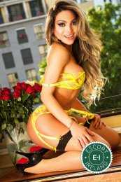 TS Rebeca Satto is a hot and horny Brazilian Escort from Dublin 2