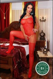 The massage providers in Dublin 4 are superb, and Alisa is near the top of that list. Be a devil and meet them today.