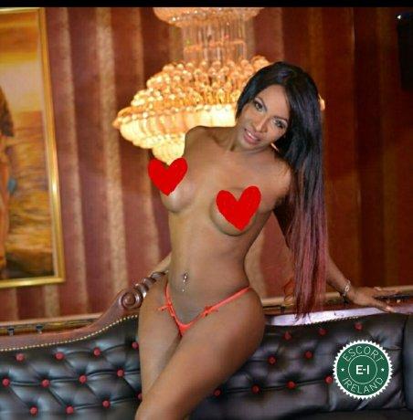 TS Rita Lopez  is a sexy Angolan escort in Cork City, Cork