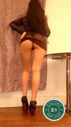 Meet the beautiful Elly in Dublin 7  with just one phone call