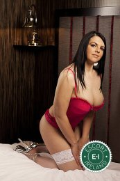 The massage providers in Limerick City are superb, and Mature Katie is near the top of that list. Be a devil and meet them today.