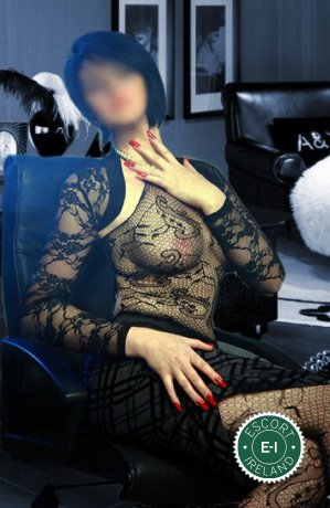 Relax into a world of bliss with Royal Massage, one of the massage providers in Dublin 24, Dublin