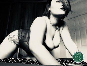 Spend some time with Curvy Nina in Dublin 2; you won't regret it