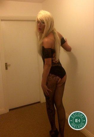 TV Danny Bond  is a super sexy Brazilian escort in Castlebar, Mayo