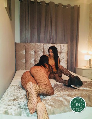 Meet the beautiful Betty & Lorra in Dublin 6  with just one phone call