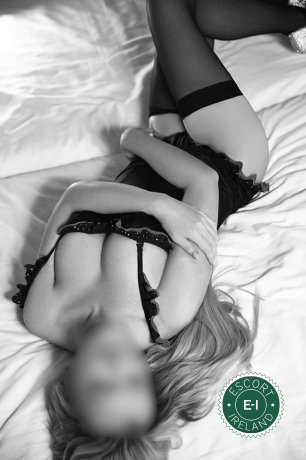 Book a meeting with Irish Abby in Dublin 18 today