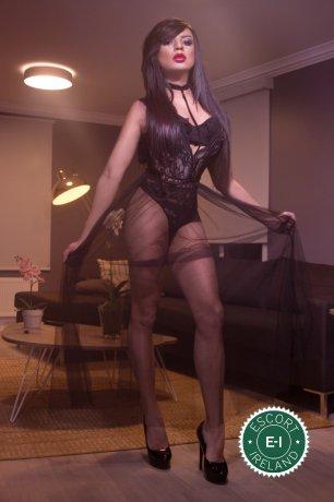 Jennyfer Hills TV is a sexy Brazilian escort in Cork City, Cork