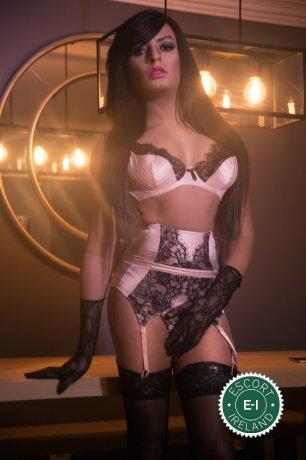 Jennyfer Hills TV is a hot and horny Brazilian escort from Dublin 18, Dublin