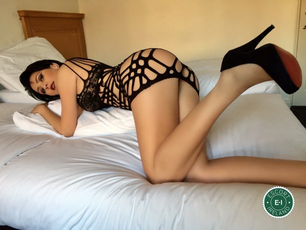 Nikky is a sexy Hungarian escort in Belfast City Centre, Belfast