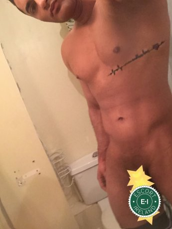 price christchurch gay escorts