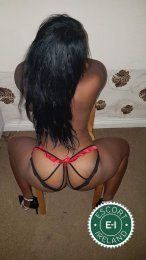 Book a meeting with Yerica in  today