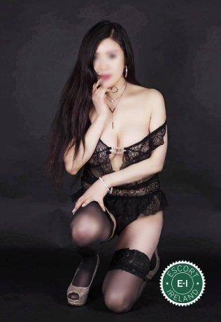 Sasha is a sexy Chinese escort in Belfast City Centre, Belfast
