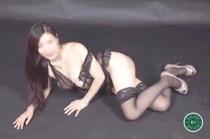 Sasha is a hot and horny Chinese escort from Belfast City Centre, Belfast
