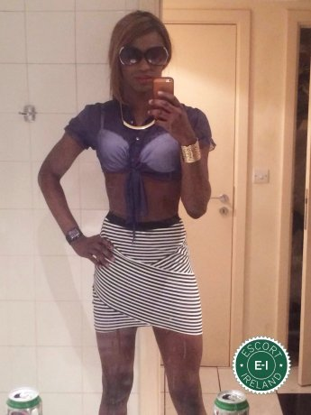 Black Panther Michelley TV is a hot and horny Puerto Rican escort from Dublin 1, Dublin