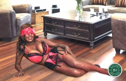 Book a meeting with Sexy Luzia in Nenagh today