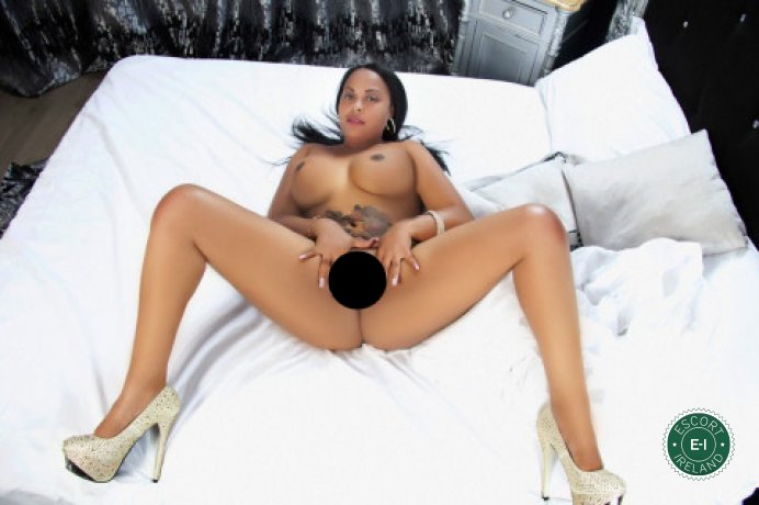 Gorgeous Malika is a very popular Colombian escort in Limerick City, Limerick