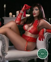 Book a meeting with Bella in Dundalk today