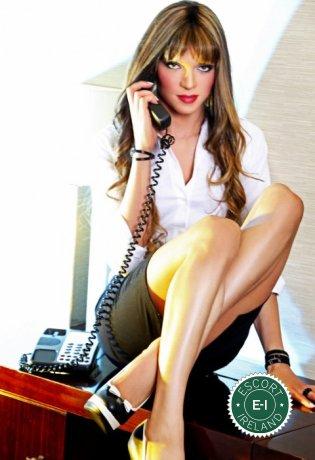 Gorgeous TV Arielle is a super sexy Brazilian dominatrix in Belfast City Centre, Belfast