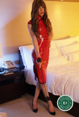 Meet Gorgeous TV Arielle in Belfast City Centre right now!
