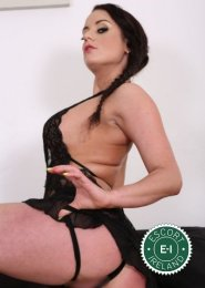 Spend some time with Kinky Katarina in Dublin 8; you won't regret it