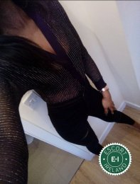 Meet the beautiful Irish Black Beauty in Belfast City Centre  with just one phone call